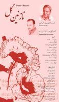 «محسن صیرفی» آلبوم «نازنین گل» را به بازار عرضه کرد